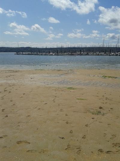 Beach of Brest, France