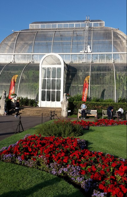 Kew Gardens in the sunshine